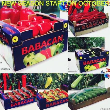 Овощи 2017 новый сезон от фабрики babacan import export