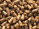 Distiller's dried grains (draff) - photo 1