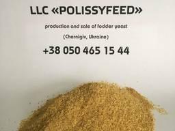 Fodder yeast