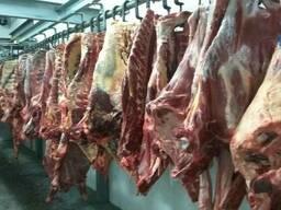 Говядина Halal (только экспорт) - фото 1