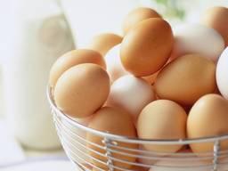 Оптом яйца куриные