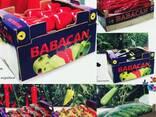 Овощи 2017 новый сезон от фабрики babacan import export - фото 1