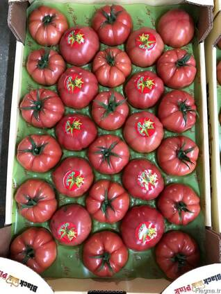 Овощи 2018/2019 новый сезон от фабрики babacan import export