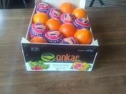 Помидоры, вишня, лимоны, апельсины, любой сезонный товар - фото 5