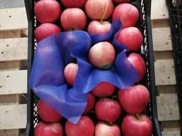 Различные фрукты и овощи от производителя.