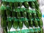 Свежие овощи высшего качества - фото 4