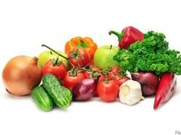 Закупка овощей на постоянной основе - фото 1